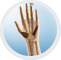 Carpal Tunnel Syndrome, Thibodaux Louisiana